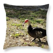 Florida Duck On Green Grass Throw Pillow