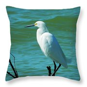Florida Egret Throw Pillow