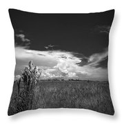 Florida Flat Land Throw Pillow