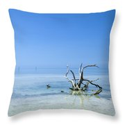 Florida Keys Lonely Root Throw Pillow