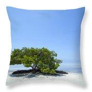 Florida Keys Lonely Tree Throw Pillow