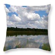 Florida Lake 1 Throw Pillow