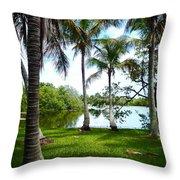 Florida Lake Throw Pillow
