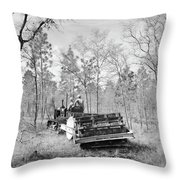 Florida Land Use, 1937 Throw Pillow