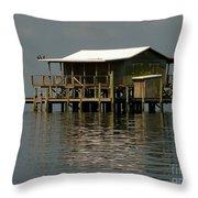 Florida Living Throw Pillow