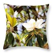Florida Magnolia Throw Pillow