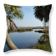 Florida Marshland Throw Pillow