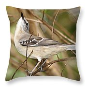 Florida Mockingbird Throw Pillow