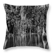 Florida Naturally 2 - Bw Throw Pillow