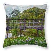 Florida Nature Throw Pillow