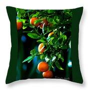 Florida Oranges Throw Pillow