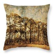 Florida Pine 4 Throw Pillow