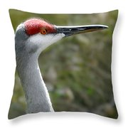 Florida Sandhill Crane Throw Pillow