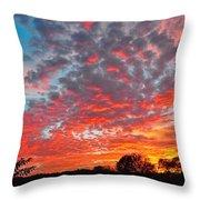 Florida Spring Sunset Throw Pillow