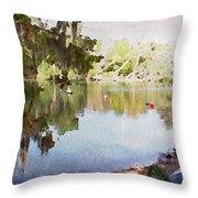 Florida Springs Waiting Throw Pillow