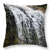 Florida Waterfall Throw Pillow