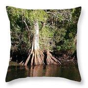 Florida Waterways 2 Throw Pillow