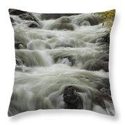Waterflow Throw Pillow