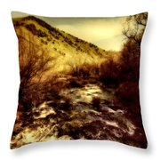Flow V14 Throw Pillow