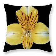 Flower 001 Throw Pillow