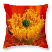 Flower 108 Throw Pillow