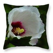 Flower 157 Throw Pillow