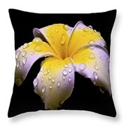 Flower 171 Throw Pillow