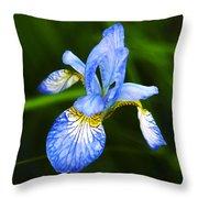 Flower 237 Throw Pillow