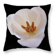 Flower 270 Throw Pillow