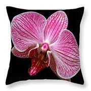 Flower 280 Throw Pillow