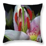 Flower  97 Throw Pillow
