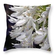 Flower-agapanthus-white-flora Throw Pillow