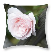 Flower Among The Fence Throw Pillow