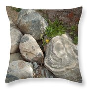 Flower And Rocks Throw Pillow