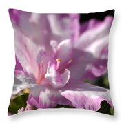 Flower--azalea-white-pink Throw Pillow