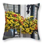 Flower Baskets  Throw Pillow
