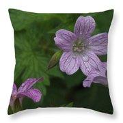 Flower Bath Throw Pillow