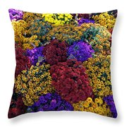 Flower Bed Across The Street From The Grand Palais Off Of Champs Elysees  Throw Pillow