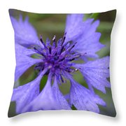 Flower Blues Throw Pillow
