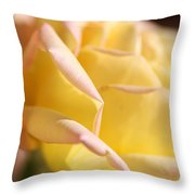 Flower-bright Yellow-rose With Pink Throw Pillow