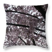 Flower Canopy And Sky Throw Pillow