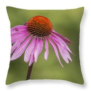 Flower Close Up At Michigan State University Throw Pillow