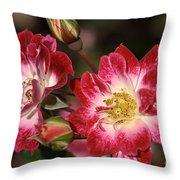 Flower-cream-pink-red-rose Throw Pillow