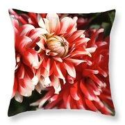Flower-dahlia-red-white-trio Throw Pillow