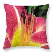 Flower Garden 02 Throw Pillow
