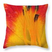 Flower Garden 03 Throw Pillow