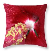 Flower Garden 16 Throw Pillow