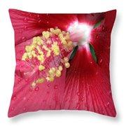 Flower Garden 17 Throw Pillow