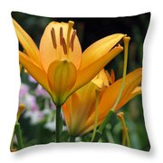 Flower Garden 22 Throw Pillow