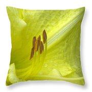 Flower Garden 33 Throw Pillow